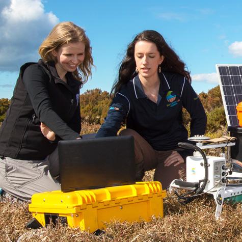 blue carbon lab researchers