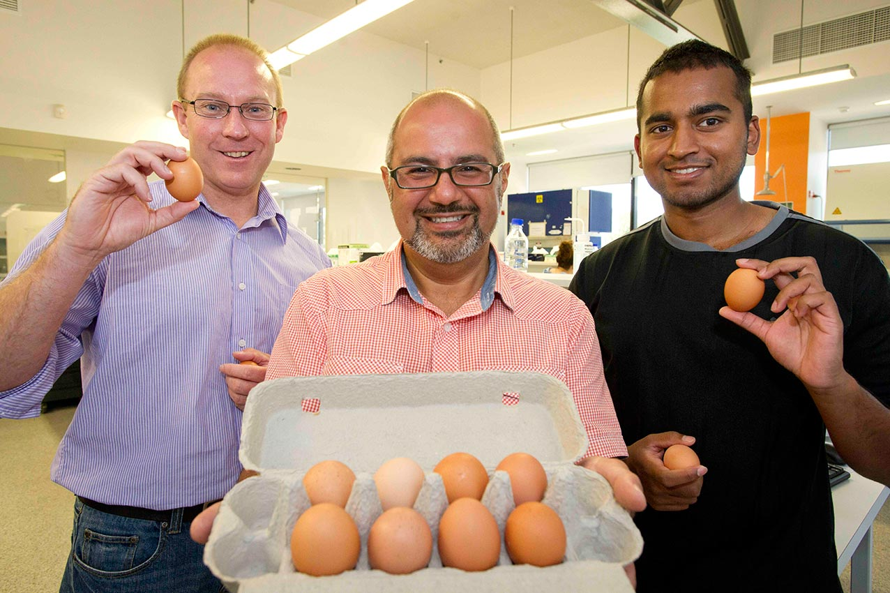 We won't be beaten! The collaborative research is being undertaken by Deakin PhD candidate, Mr Pathum Dhanapala, (RIGHT) under the co-supervision of Associate Professor Suphioglu and Adjunct Professor Doran (LEFT).