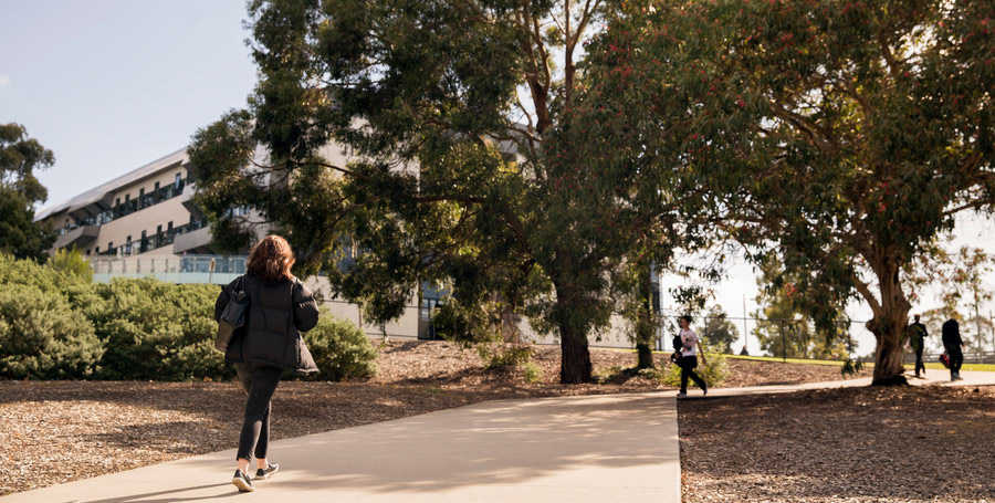 Pathway at the Burwood Campus