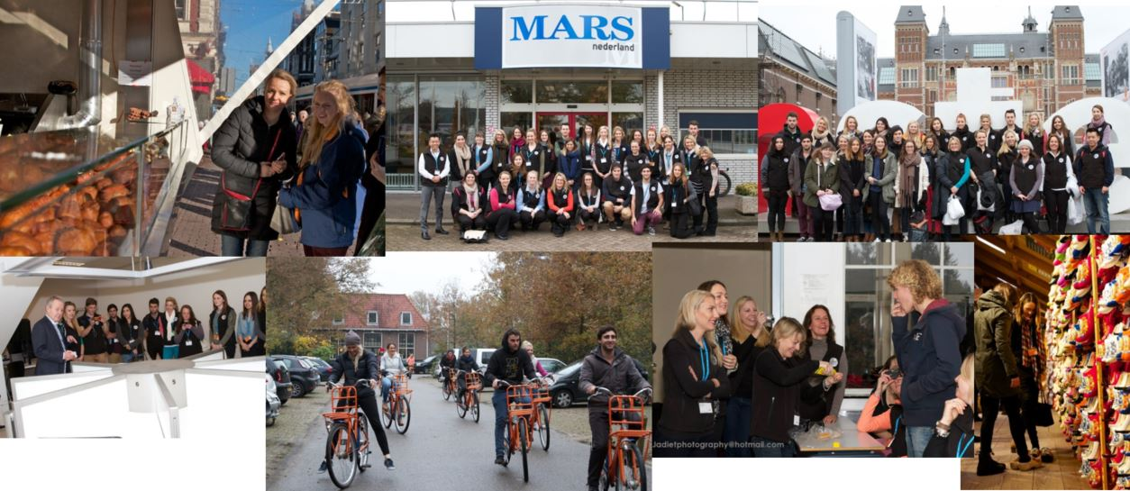 The Netherlands Study Tour