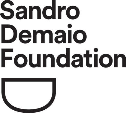 Sandro Demaio Foundation logo