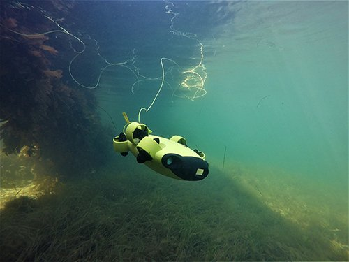 Pickle the underwater drone