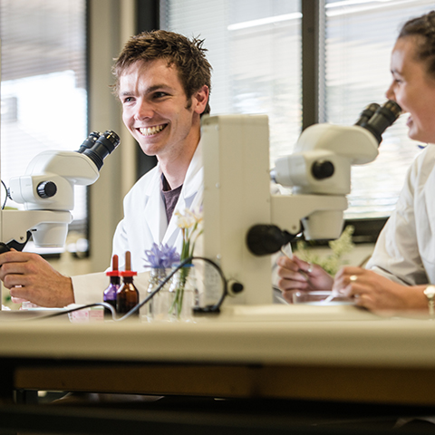 Students laughing whilst analysing samples under a microscope