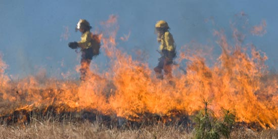 Study shows stress of fighting bushfires and importance of proper rest