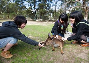 Study tour zoo