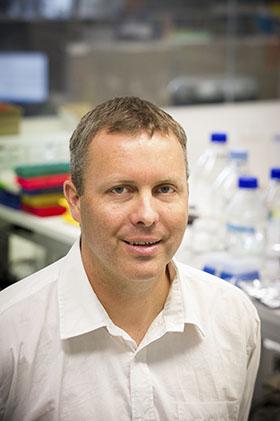 Dr Yann Gibert