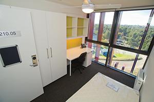 Burwood accommodation