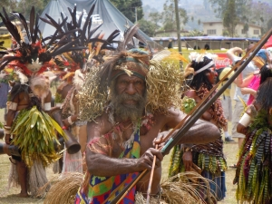 Image of a performer at the Goroka Show in Papua New Guinea, 2012.