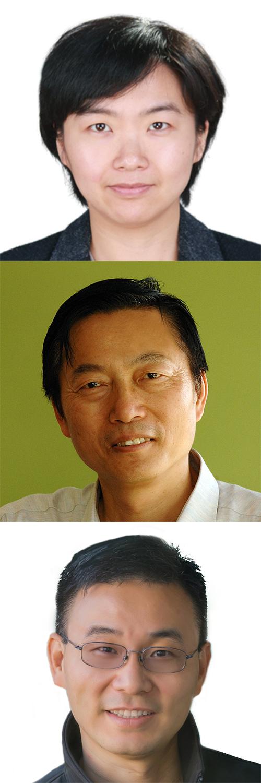 From top: Dr Tianqing Zhu, Professor Wanlei Zhou and Dr Gang Li.