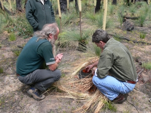 Peter Box from Parks Victoria (left) and Professor David Cahill in the Brisbane Ranges National Park