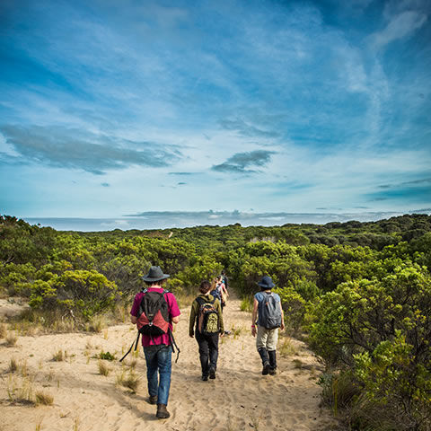 Students walking to beach at Cape Otway