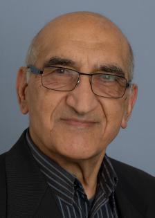 Profile image of Mehdi Taghian